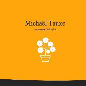 Michaël Tauxe ostéopathe D.O, dipl. CDS-GDK, membre FSO-SVO Sion